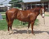 Makin a Stylish Play<br>AQHA 5216110